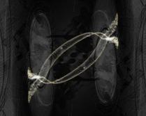Relativity446